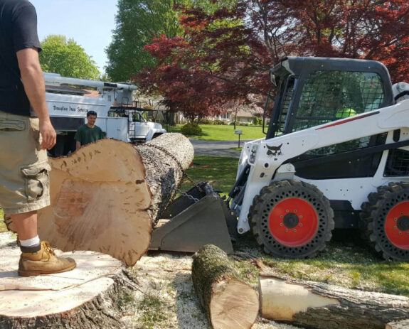 Services-Town 'n' Country FL Tree Trimming and Stump Grinding Services-We Offer Tree Trimming Services, Tree Removal, Tree Pruning, Tree Cutting, Residential and Commercial Tree Trimming Services, Storm Damage, Emergency Tree Removal, Land Clearing, Tree Companies, Tree Care Service, Stump Grinding, and we're the Best Tree Trimming Company Near You Guaranteed!