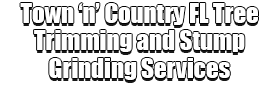 Town 'n' Country FL Tree Trimming and Stump Grinding Services Logo-We Offer Tree Trimming Services, Tree Removal, Tree Pruning, Tree Cutting, Residential and Commercial Tree Trimming Services, Storm Damage, Emergency Tree Removal, Land Clearing, Tree Companies, Tree Care Service, Stump Grinding, and we're the Best Tree Trimming Company Near You Guaranteed!